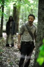 Trailer Time: The Walking Dead Season 4