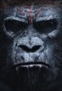 Apes Rule – Biff Bam Pop's Weekend Box Office Wrap-Up Report