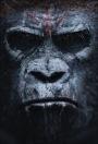 Apes Rule – Biff Bam Pop's Weekend Box Office Wrap-UpReport