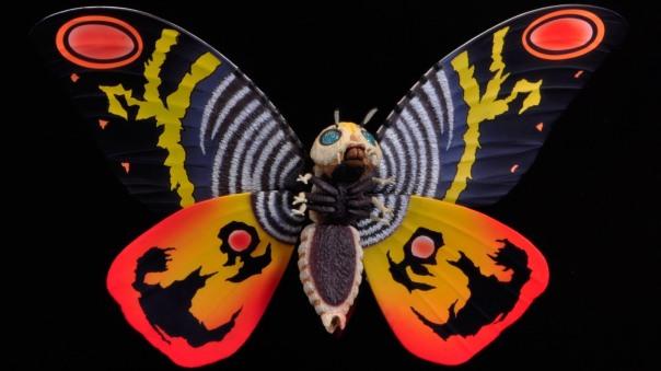 moth1