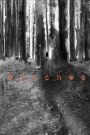 Image Giant-Sized Artist's Proof Edition: Wytches #1 On The Wednesday Run
