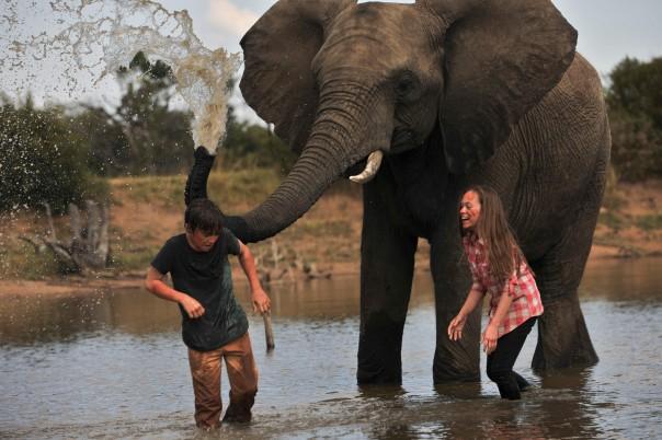 JP, ELLA Elephant