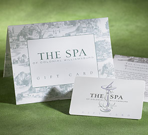 the-spa-gift-card